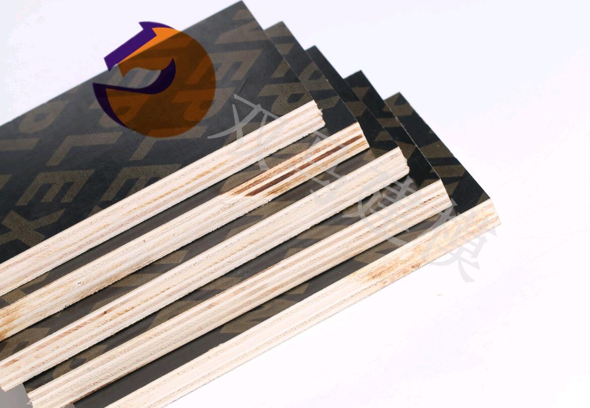 用于水利工程项目专用建筑模板